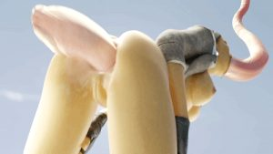 3D hentai tumblr porn